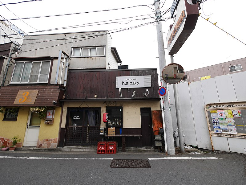 File:3 Chome Kitazawa, Setagaya-ku, Tōkyō-to 155-0031, Japan - panoramio (152).jpg