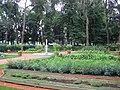 5621. St. Petersburg. Summer Garden.jpg