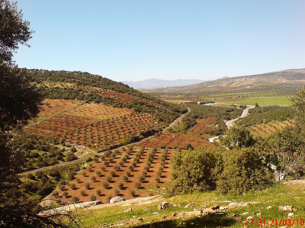 AFRIN -GULIY SOHREN - panoramio.jpg