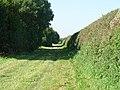A Green Lane - geograph.org.uk - 537796.jpg