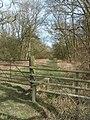 A Ride through Aversley Wood - geograph.org.uk - 726301.jpg