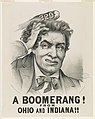 A boomerang!- From Ohio and Indiana!! LCCN90711994.jpg