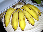 A bunch of bananas.jpg