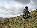 A cairn on Wether Law - geograph.org.uk - 736342.jpg