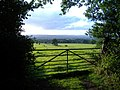 A glimpse of the East Devon countryside - geograph.org.uk - 1451327.jpg