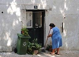 A portuguesa e o cão (6197364187)