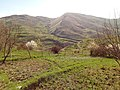 Abandoned village Boloraberd 03.jpg