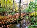 Acadia National Park (8111155291).jpg