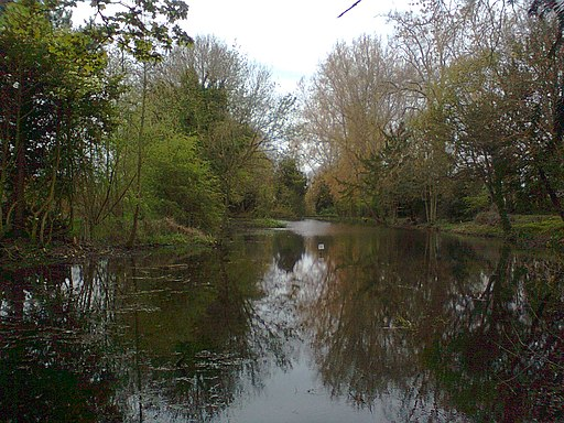 Adderbury Lake (the northern end, looking south) (geograph 2935628)