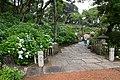Ajisai-no-Mori in Nihonmatsu-ji, Ibaraki 01.jpg
