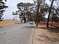 Al Marj Tacnis road.JPG