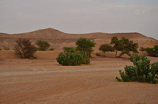 Riyadh Region Administrative region of Saudi Arabia