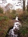 Alderney, a youthful Bourne stream - geograph.org.uk - 1712033.jpg
