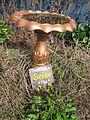 Algiers NOLA Mch2014 Scoop the Poop.jpg