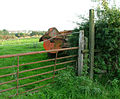 An unwelcoming stile - geograph.org.uk - 236800.jpg