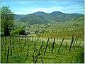 April Patina Vosges Die Vogesen France - Master Alsace magic Elsaß Photography 2014 - panoramio (6).jpg