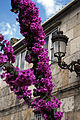 Architecture of Vigo (pattern). Vigo, Galicia, Spain,Southwestern Europe-2.jpg