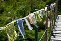 Argentina - Bariloche trekking 143 - prayer flags (6798047747).jpg