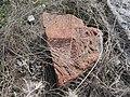 Arinj khachkar, old graveyard (228).jpg