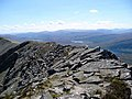 Arkle's summit ridge - geograph.org.uk - 829105.jpg