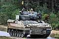 Armoured Fighting Vehicle (50550179398).jpg