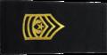 Army-U.S.-OR-09b.png