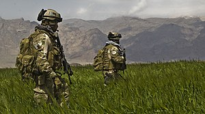 Special Forces (United States Army) - U.S. Army Special Forces soldiers from the 3rd Special Forces Group patrol a field in the Gulistan district of Farah, Afghanistan