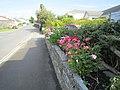 Around Tintagel, Cornwall - panoramio (2).jpg