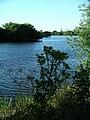 Attenborough Nature Reserve - geograph.org.uk - 202642.jpg