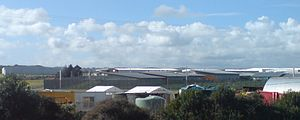 Auckland Region Women's Corrections Facility - The prison viewed over nearby properties
