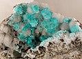 Aurichalcite79 Mine.jpg