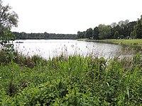 Auwaldsee Ingolstadt.JPG