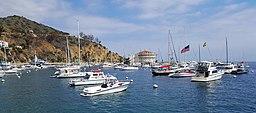 Avalon harbor and the Casino by D Ramey Logan