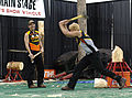 Axe throwing (421576970).jpg