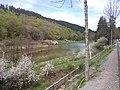 Bärenfichtenweiher in Flussrichtung - 1.jpeg