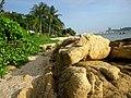 BJ Beach (6).jpg