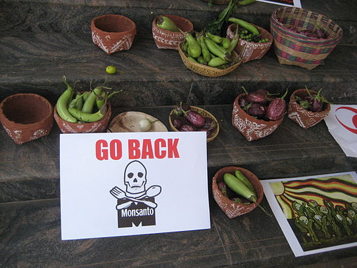 BT Brinjal Protest Bangalore India Go Home Monsanto