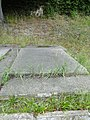 Bad Doberan Muenster Grabplatte Leopold von Plessen 2010-08-22 031.JPG