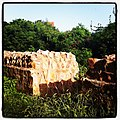 Badun Gate.jpg