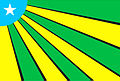 Bandeira do Carajás.jpg