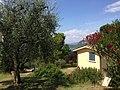 Bardolino, Italy 2015 - panoramio (1).jpg
