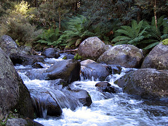Barrington Tops National Park - The Barrington River.