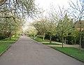 Barrow Road in spring - geograph.org.uk - 2155558.jpg