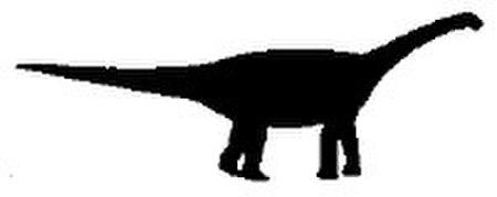 Basal sauropod silhouette.jpg