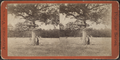 Battle field at Ticonderoga. (See sign on the tree.), from Robert N. Dennis collection of stereoscopic views.png