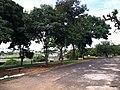 Bauru - SP - panoramio (59).jpg