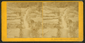 Beecher's Falls, Crawford Notch, N.H, from Robert N. Dennis collection of stereoscopic views.png