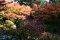 Bellevue Botanical Garden 16 - Yao Garden.jpg