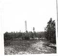 Bergen-Belsen, David Bucknall 1959 (1).png