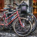 Bicicletas (24970452001).jpg